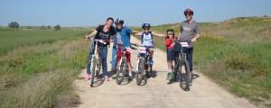 bike rent family2