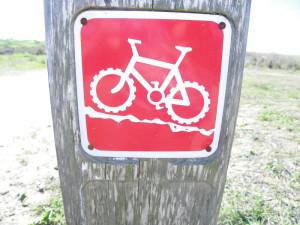 המסלול האדום